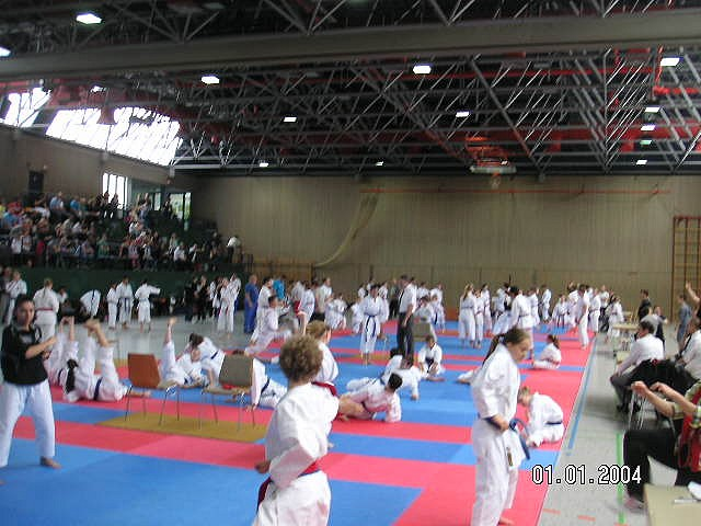 German Kata Cup 2014 in Maintal